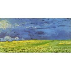 Wheat Field under Clouded Sky