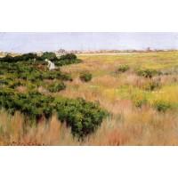 Landscape near Coney Island