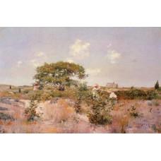 Shinnecock Landscape 1