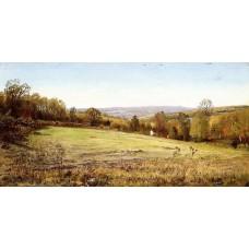 Chester County Landscape
