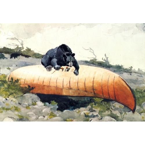 Bear and Canoe