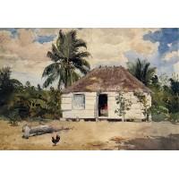 Native Huts Nassau