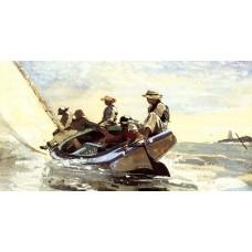 Sailing the Catboar