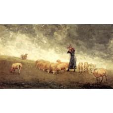 Shepherdess Tending Sheep