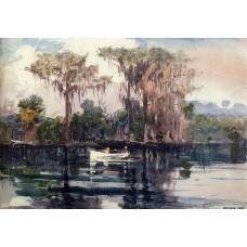 St John's River Florida 1